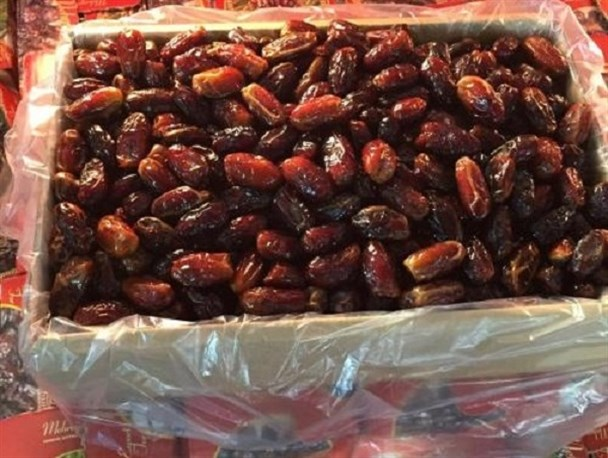 Harvest of more than 3,000 tons of dates in Sarbaz city