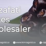 Mazafati dates wholesaler KimiaGold company